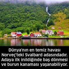 Bilgi The River, Memorial Day Sales, Happy Memorial Day, Meet The Teacher, Interesting Information, Countries Of The World, Science And Nature, Amazing Nature, Cool Words