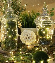 Warm White LED Battery Micro Rice Wire Copper Fairy String Lights Party - Home Decoration Noel Christmas, Christmas Crafts, Christmas Decorations, Holiday Decor, Spring Decorations, Christmas Outfits, Christmas Kitchen, Elegant Christmas, Christmas Centerpieces