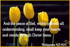 """And the peace of God, which passeth all understanding, shall keep your hearts and minds through Christ Jesus! Lord And Savior, My Lord, Philippians 4 7, Walk In The Spirit, Peace Of God, Daily Scripture, You Are Blessed, Jesus Loves You, Son Of God"