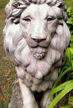 Lion statue at Hammond Castle, Gloucester MA, love his face