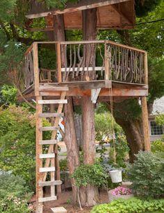 Great little treehouse