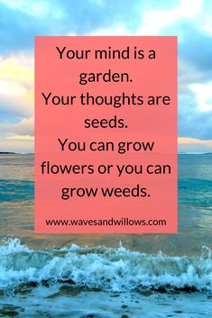 Your mind is a garden. - Quote Positivity - Positive quote - Mindset quote for positive thoughts. The post Your mind is a garden. appeared first on Gag Dad. Positive Quotes, Motivational Quotes, Inspirational Quotes, Positive Mindset, Positive Affirmations, Mindset Quotes, Life Quotes, Favorite Quotes, Best Quotes