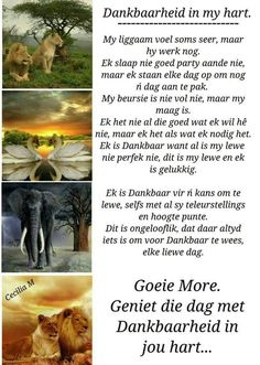 Evening Greetings, Good Morning Greetings, Good Morning Wishes, Good Morning Quotes, Lekker Dag, You Raise Me Up, Afrikaanse Quotes, Goeie More, Special Quotes