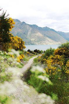 Walking hiking trail along coast.