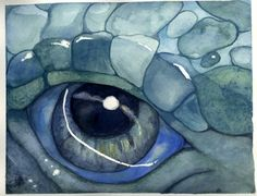 water color eye images | the coolest dragon's eye ever. It's a Fantasy Dragon's Eye watercolor ...