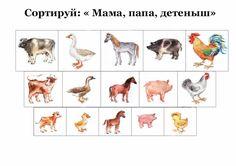 Farm Animals, Children, Cats, Games, Farmhouse, Rome, Young Children, Gatos, Kitty Cats