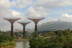 Garden Trends 2013 - Forces of Nature Emerging out of land reclaimed from the sea in Singapore, these Supertrees are planted w/160,000 plants & over 200 species/ BE OPEN. CREATIVE THINK TANK