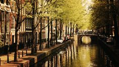 """AMSTERDAM - """"Some tourists think Amsterdam is a city of sin, but in truth it is a city of freedom. And in freedom, most people find sin."""" ~ John Green,"""