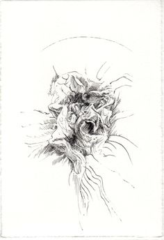 254 Seed Bank, My Works, Abstract, Drawings, Artwork, Natural Forms, Studio, Summary, Work Of Art