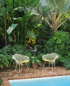 Bertoia chairs in lush tropical yard. Outdoor Spaces, Outdoor Living, Landscape Design, Garden Design, Estilo Tropical, Outdoor Armchair, Outdoor Chairs, Patio Chairs, Side Chairs