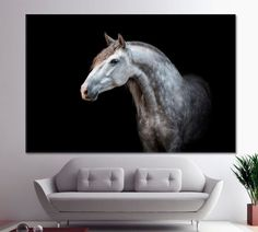 Horse Horse Painting Horse Art Horse Decor Horse Gift Horse Photography Horse Wall Art Horse Canvas Horse Print Horse Lover Gift by ArtWog Andalusian Horse, Horse Horse, Friesian Horse, Draft Horses, Arabian Horses, Palomino, Horse Gifts, Gifts For Horse Lovers, Pretty Horses