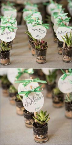 Mint Green Affair In Asheville Succulent Wedding FavorsAshevilleWedding