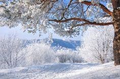 Kremenets colpisce per la sua bellezza inverno (FOTO) | Kremenets impulsi