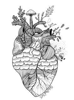 mon coeur comme une pigne de pin, Cécile Hudrisier