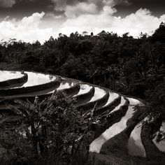 Terrace - Jatiluwih - Bali By Olivier Bergeron