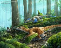 A pair of *Deinonychus are intensely focused on the possible meal of a *Gobiconodon. Artwork by Jennifer Miller Prehistoric Wildlife, Prehistoric World, Prehistoric Creatures, Dinosaur Fossils, Dinosaur Art, The Good Dinosaur, Reptiles, Mammals, Lizards