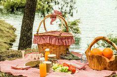 picnic con amigass - Buscar con Google
