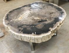 "42"" w Coffee Table Polished Petrified Wood Top Black White Stainless Steel Base 