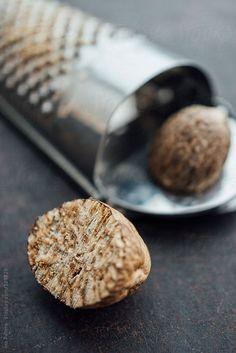 Nutmeg by Ina Peters | Stocksy United