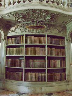 lovely library biblioteca