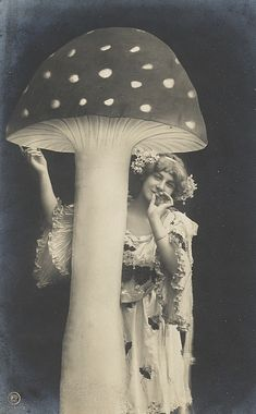 Vintage French Postcard Woman Mushroom ACEO by RabbitMoonCottage Vintage Pictures, Vintage Images, Mushroom Art, Giant Mushroom, Alphonse Mucha, Photomontage, Vintage Photographs, Vintage Beauty, Faeries