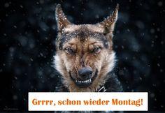 funpot: Montag.png von Sylke