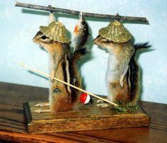 Funny Taxidermy | Squirrels_fishing