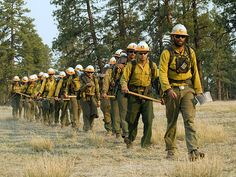A crew of wildland firefighters begins their trek into a fire. Their specialty is wildfire suppression, but they sometimes perform other work, including search and rescue and disaster response assistance. (U.S. Forest Service)