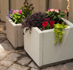 DIY Concrete Planters - make your own from patio pavers