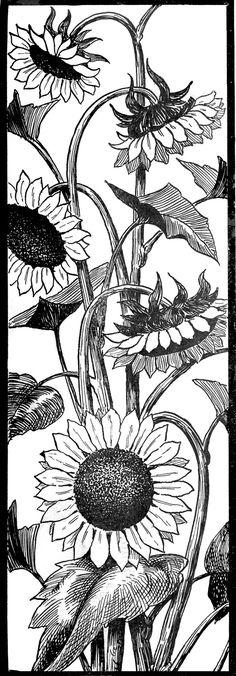 Request Day - Sunflowers, Seahorse, Art Nouveau Frame, Big Ben - The Graphics Fairy maybe transfer onto wood with black, red or yellow background