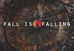 Fall Is Falling Pictures, Photos, and Images for Facebook, Tumblr, Pinterest, and Twitter