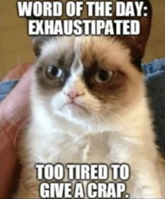 23 Best So Tired Memes Exhausted Funny Sleepy Memes Images