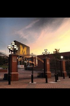I spent four amazing years at the University of Michigan. This experience molded me personally and professionally, and introduced me to a group of people who will be lifelong friends. Go blue! Michigan Wolverines Football, U Of M Football, Michigan Athletics, University Of Michigan Campus, Michigan Go Blue, Go Big Blue, Home Team, Ann Arbor, Places To See