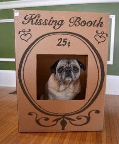 Pug Kissing Booth