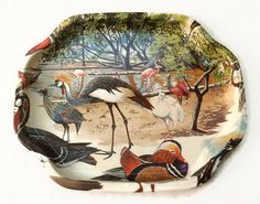 Vintage Exotic Birds Tray Flamingos Cranes Water Fowl Peacocks Metal Tray Decorative Tray Serving Tray Small Tray Tip Tray Elite by ThriftyTheresa
