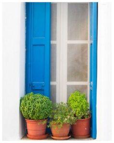 Folegandros island, Greece: basil pots sitting on the window sill, typically Greek Greek Blue, Adirondack Furniture, Window View, Through The Window, Pergola, Windows And Doors, Decoration, Farmhouse Style, Around The Worlds