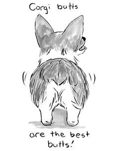 Just a gentle reminder to check the board before pinning. We are starting to see a lot of duplicates later in the day of Corgis pinned earlier in the day. I hate to delete someone's pin, so please double check! Happy pinning!