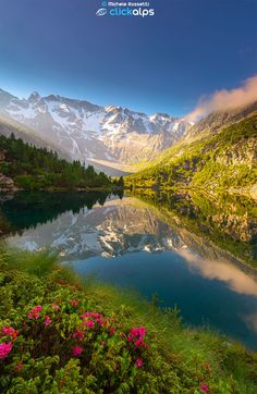 Incantate Visioni Alpine by Michele Rossetti on 500px