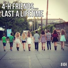 4h is where I have met some of my best friends. We don't see each other that often but when we do, it seems like we were never apart.