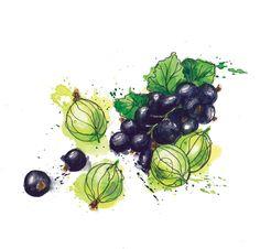 Fruit - Georgina Luck
