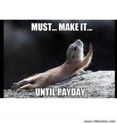 Funny pay day images ( salary day ) US Humor - Funny pictures, Quotes, Pics, Photos, Images