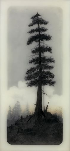 Brooks Shane Salzwedel  I like this piece as the single tree is the focal point and the clouds behind are fainter which helps the tree to become bolder.
