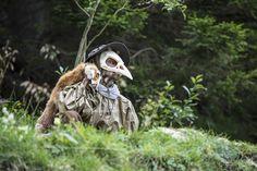 Jelili Atiku - Szukaj w Google Owl, Bird, Google, Animals, Animales, Animaux, Owls, Birds, Animal