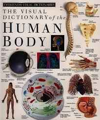 The Human Body is one of the top ten books to read before college
