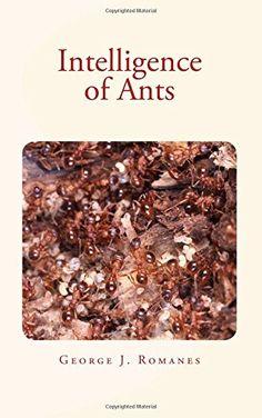 Intelligence of Ants by George J. Romanes https://www.amazon.com/dp/1533690278/ref=cm_sw_r_pi_dp_-7GJxb2MMFAKG