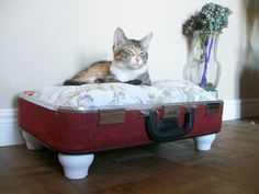 Upcycled Vintage Suitcase Pet Bed on Etsy (lovenostalgicwhimsy) - Kenneth and I really want to make one of these. once we do I'm sure the cats will ignore it and sleep in an old cardboard box instead. :-) Great idea ~ msut try! Cardboard Box Crafts, Future Games, Floral Pillows, Do It Yourself Projects, Upcycled Vintage, Awesome Stuff, Suitcase, Pup, Diy Projects