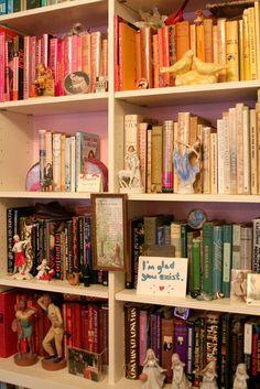 Colorized bookshelf