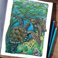 "Polubienia: 81, komentarze: 4 – LunaSolvo (@luna_solvo) na Instagramie: ""Черепашки из #манияботаника тоже красились три месяца, #ненуачё  #manicbotanic #coloringbook…"""