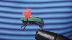 Fly Tying A Green Beetle Indicator (Sped Up)