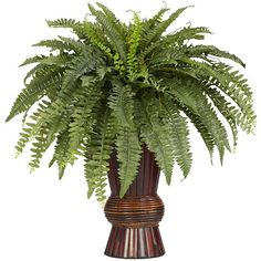 With its authentic look and genuine bamboo pot, this silk Boston fern will add a tropical look to your home office or den. Its durable polyester construction will look fresh year after year, and your eco-conscious friends will love the bamboo pot.